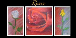 Roses by lorestra