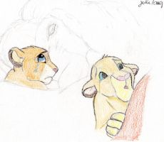 mufasa has died by narusasulove
