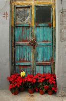 Old Blue Door by SniperOfSiberia
