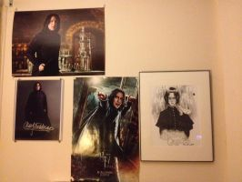 My Snape Wall Grows!!! by dragoon811
