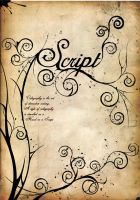 script by LoOnzistic
