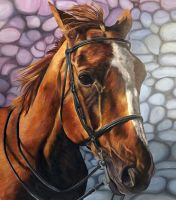 Horse portrait with Background 2 by bunnyrabb567