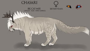 Chasari Reference Sheet by Chasari