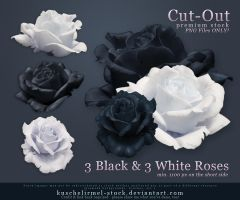Black and White Roses Precut by kuschelirmel-stock
