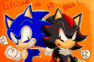 Welcome To My Page : Sonic and Shadow by SonicForTheWin2
