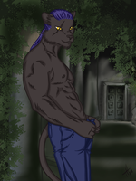 Anthro Panther Coloured by talonian