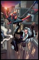Spiderman and Black Cat by arielmedel