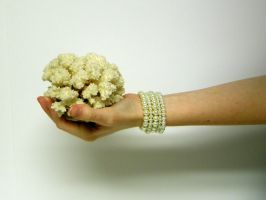 Hand with Coral Stock7 by NoxieStock