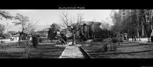 Autumnal Park by Rely