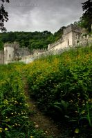 070610 Gwrych Castle 2 by InsaneGelfling