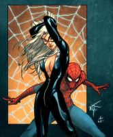 Foorays Black Cat n Spidey by dcjosh