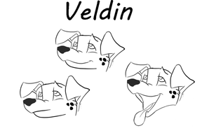 Veldin (Quick drawing of head 3/4 perspective) by ALexJonkman