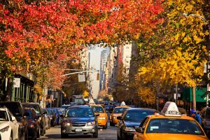 5th Avenue from Washington Square by andyietok