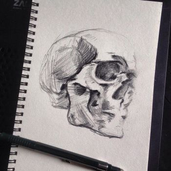 And one more skull by InkHearta