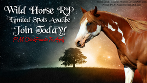 Horse RP Banner Comish by ChrisHollywood5