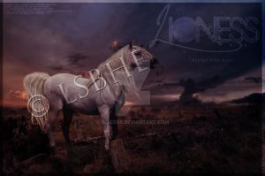 Lioness by ExquisArt