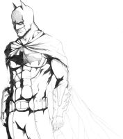 Batman Inks by Animixter
