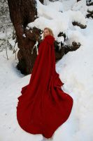 Riding Hood: Some Child Possessed by FoxGlovesCosplay
