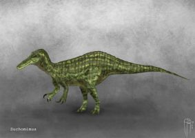 Suchomimus by JELSIN