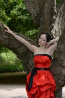 Red Satin 17 by Anariel-Stock