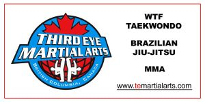 Banner Third Eye Martial Arts by RinnG