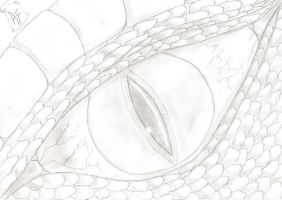 Dragon's eye - traditional draw by Ahrifox