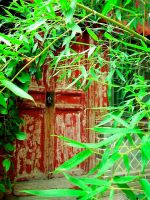Door with Bamboo by papertigerphotograpy