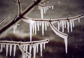 lb1-34 icicles by bstocked