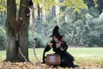 Stock - Halloween special witch uses cauldron by S-T-A-R-gazer