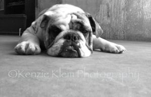 Tired by kenzieklemphotog