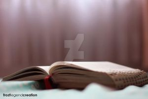 Bible - 1 by froztlegend