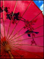 Umbrella. by EmilyOrange
