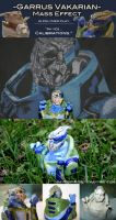 Ah Yes... Calibrations by ravenwing136