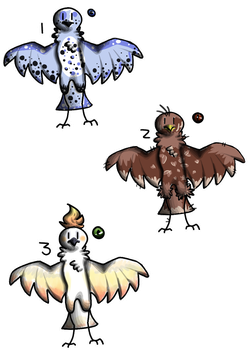 Birb Adopts 2/3 open by Awes0me-Ad0pts