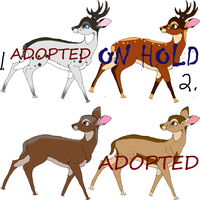 Deer Adopts 2 1 LEFT!!!! by DracKeagan