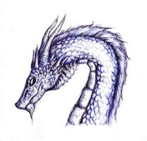 Hospital Sketches: Dragon by lmerlo72