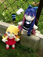 Panty and Stocking by Geek-ON