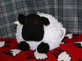 Sheep cosie by foxymitts