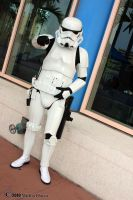 Imperial Storm Trooper 2 by Insane-Pencil