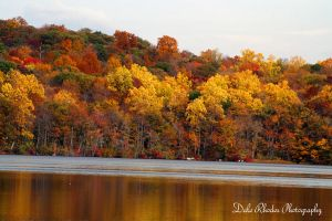 Colors of Fall by DalePhotography