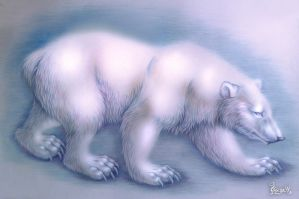 White bear by OmegaLioness
