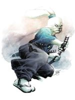 Usagi Yojimbo by ronsalas