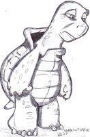 Vern the Turtle-Sad Reptile by boochan82