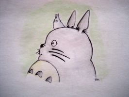 Oh-Totoro and Chibi-Totoro by DreamAReality