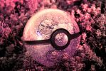 The Pokeball of Butterfree by wazzy88