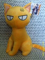 kyo cat form Plushie by yo-yo09