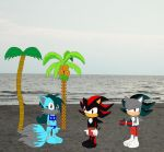 Shadow, Amber, and Butch on the beach by YRT9401