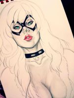 WIP (black cat) by Anan-MaQsoud