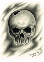 Skull and shadows by Torsk1