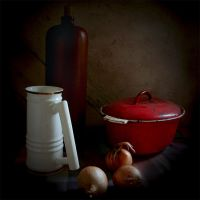 still-life.. by BrokenLens